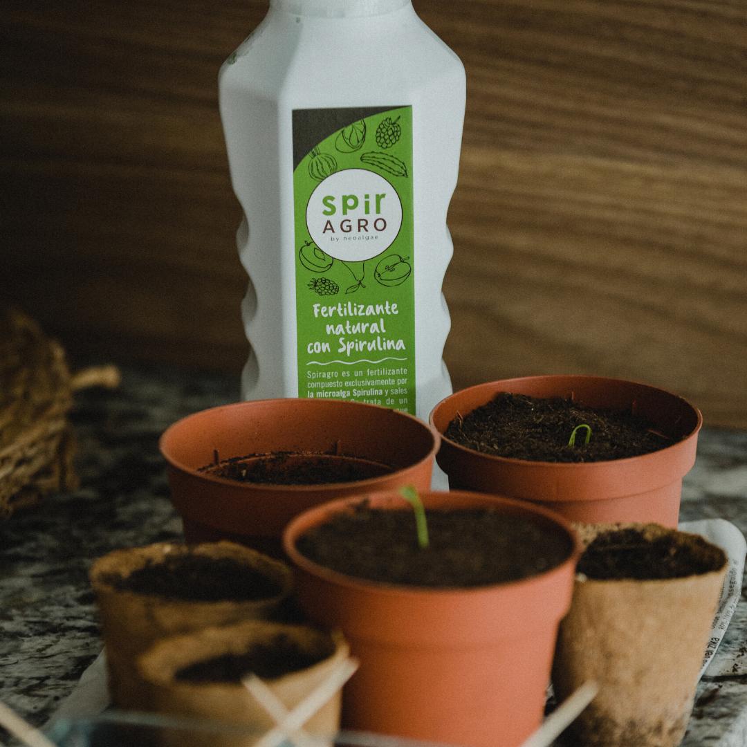 spiragro es el fertilizante eco a base de spirulina de neoalgae