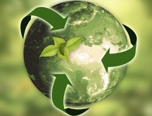 Nace MICOALGA-FEED, nuevo proyecto sostenible